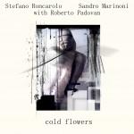 sandro-marinoni-stefano-roncarolo-roberto-padovan-2009-cold-flowers