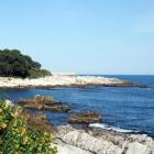Colourful coast