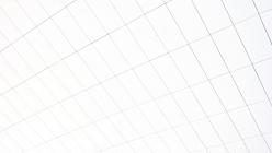 White grid ceiling