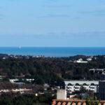 Distant Sea (Zoom)
