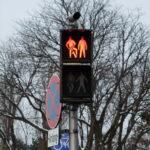Cute traffic lights