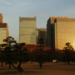 japan-tokyo-cityscape-with-trees-sunrise